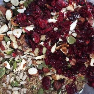 granola protein balls healthy breakfast snacks date peanutbutter